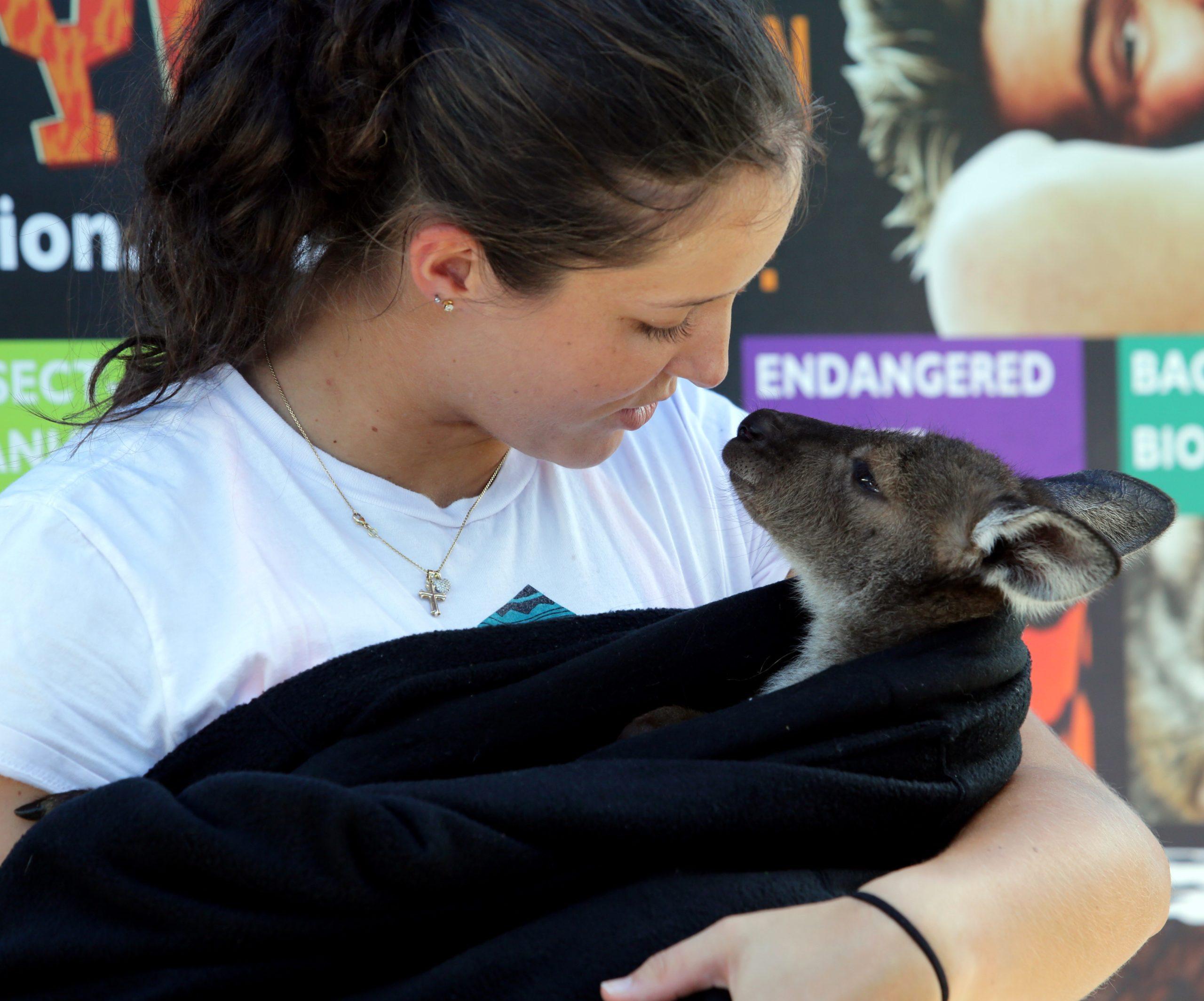 Robson: Zaadoptowałam 27 koali, ale jest też wiele innych zwierząt, które trzeba ratować